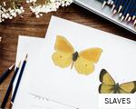 SLAVES anagram