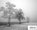 SNOW anagram