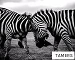 TAMERS anagram