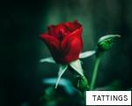TATTINGS anagram