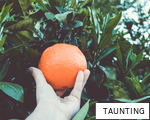 TAUNTING anagram