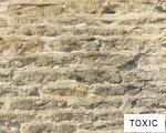 TOXIC anagram