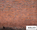 WALLED anagram