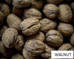 WALNUT anagram
