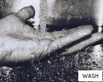 WASH anagram