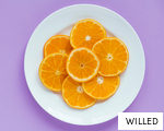 WILLED anagram